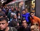 Áo sẽ đóng cửa biên giới sau khi tiếp nhận 12.000 người di cư