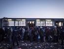 Áo, Slovakia và Hà Lan siết chặt biên giới, chặn người di cư