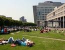 Cơ hội Học bổng du học Hà Lan lên đến 200 triệu