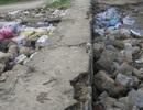 Hàng chục mét kè biển đứng trước nguy cơ bị xóa sổ do mưa lớn