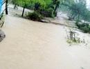 Vỡ bờ kè trong đêm, hơn 300 nhà dân ngập sâu