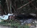 Một cô giáo bị giết tại nhà riêng rồi đốt xác phi tang