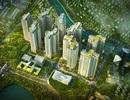 Do đâu thị trường bất động sản ngày càng phát triển?