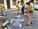 CSGT bắt 40kg rắn, rùa không rõ nguồn gốc trong đêm