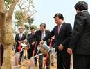 Khởi công KCN ưu tiên phát triển gần đường cao tốc Nội Bài - Lào Cai