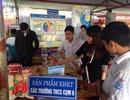 Học sinh Thái Bình say mê sáng tạo khoa học