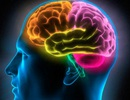 Mắc bệnh viêm nhiễm có thể làm giảm IQ