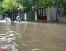 Đối phó với bão số 1: Đảm bảo cơ sở vật chất phục vụ kỳ thi THPT quốc gia
