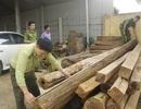 Vận chuyển gỗ trái phép, bị phạt hơn 1,4 tỷ đồng