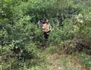Tìm thấy nam thanh niên mất tích 4 ngày trong rừng sâu