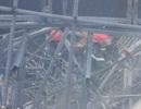 """Thời khắc giàn giáo """"khổng lồ"""" đổ sập vùi lấp 7 công nhân"""