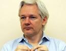 Những kế hoạch không tưởng để giải cứu ông chủ Wikileaks