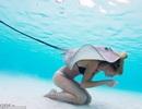 Người mẫu mặc áo tắm thoải mái chơi đùa cùng cá đuối