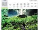 Đắm say hình ảnh Sơn Đoòng trên lịch Tết Bính Thân 2016