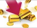 Khắp nơi bán tháo, nhà giàu Việt giữ vàng phòng thân
