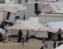 Vì sao người Syria không di cư tới Vùng Vịnh giàu có?