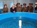 Quan chức Triều Tiên xuất hiện trở lại sau tin đồn hành quyết