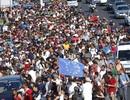 Hàng nghìn người di cư tràn từ Hungary sang Áo