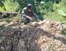 Đột nhập hầm vàng lậu giữa rừng cấm
