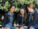 Các trường Trung học Australia - Sự chọn lựa lý tưởng cho con em của bạn!