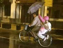 """Ảnh """"cháu gái dùng ô che mưa cho ông"""" gây xúc động dân mạng"""