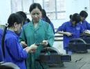 Bị phạt tới 150 triệu đồng nếu VPHC trong lĩnh vực dạy nghề