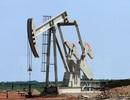 Giá dầu thô giảm sâu: Người cười, kẻ khóc