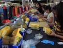 Thu nhập bình quân lao động ngành da giày khoảng 5,5 triệu đồng/người/tháng