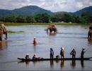 Cảnh đẹp yên bình đến nao lòng ở hồ Lắk