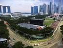 """""""Cơn bão"""" tại Đông Nam Á mang tên Vettel"""