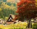 Những điểm đến mùa thu ở Nhật khiến du khách mê mẩn