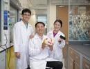 Chất nhuộm màu giúp phát hiện tế bào thần kinh bị bệnh