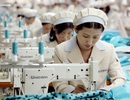 Lao động VN tại Thái Lan: Hàng chục ngàn lao động sẽ được đảm bảo pháp lý