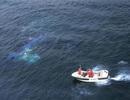 Nhật Bản ngừng tìm kiếm 3 thuyền viên Việt Nam mất tích