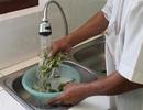 Làm gì để bảo vệ sức khoẻ trước nguồn nước bị ô nhiễm?