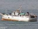 Ngày 13/10:  Chưa có hồi kết vụ 3 thuyền viên VN mất tích ở biển Nhật Bản