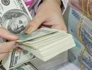 """Ngân hàng """"ngoại"""" không cần làm thủ tục thành lập ngân hàng con"""