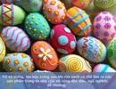 Những công dụng bất ngờ của vỏ trứng