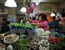 Trung Quốc bãi bỏ kiểm soát giá với hầu hết hàng hoá và dịch vụ