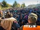 Cảnh sát Đức ồ ạt ra quân truy quét đường dây buôn người
