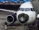 Máy bay bị bẹp dúm mũi vì gặp mưa đá to bằng quả bóng chày