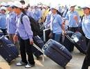 Tạm dừng dịch vụ đưa lao động làm việc tại Ả rập Xê út của 3 công ty XKLĐ