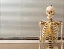Suốt 40 năm giảng dạy bằng... xương người