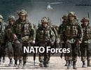 NATO đã phạm 2 sai lầm lớn nhất nào đối với Nga?