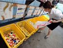 Thị trấn không rác ở Nhật