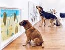 Triển lãm nghệ thuật dành riêng cho chó