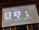 Nobel Hóa học vinh danh 3 nhà khoa học nhờ phát minh những cỗ máy siêu nhỏ