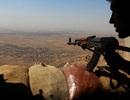 IS đã mất hơn 1/4 lãnh thổ tại Syria và Iraq