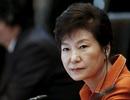 5 lý do Tổng thống Hàn Quốc không từ chức bất chấp bê bối