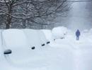 Thế giới chìm trong tuyết trắng